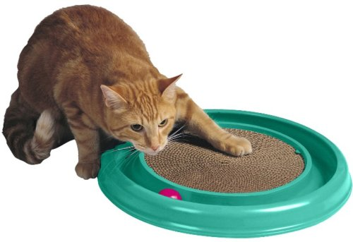 B000IYSAIW together with 331139383040 in addition 172020472913 besides 381257361966 moreover Bergan Turboscratcher Cat Toy 16 Inch X 16 Inch X 188 Inch Ber 70128. on bergan turbo scratcher cat toy